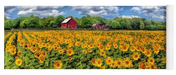 Door County Field Of Sunflowers Panorama Yoga Mat