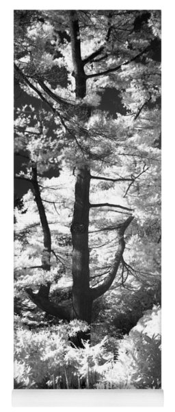 Dream Tree Yoga Mat