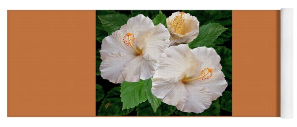 Dreamy Blooms - White Hibiscus Yoga Mat