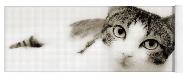 Dreamy Cat 2 Yoga Mat