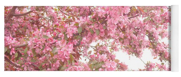 Dreamy Pink South Carolina Spring Apple Blossom Trees Yoga Mat