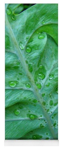 Droplets On Green Yoga Mat