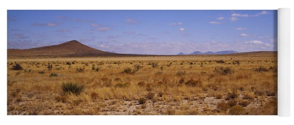 Dry Grass And Bush At Big Bend National Yoga Mat