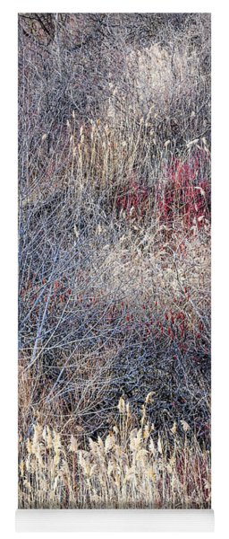 Dry Grasses And Bare Trees Yoga Mat