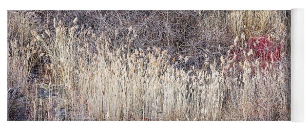 Dry Grasses And Bare Trees In Winter Forest Yoga Mat