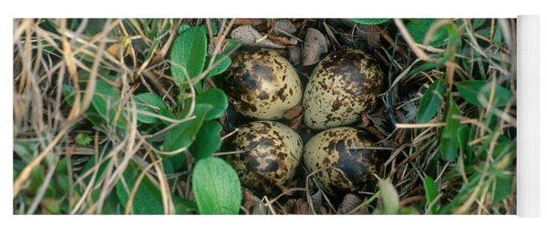 Dunlin Nest And Eggs Yoga Mat