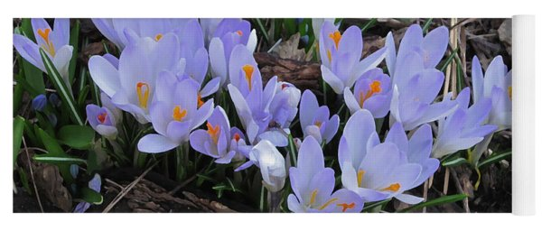 Early Crocuses Yoga Mat