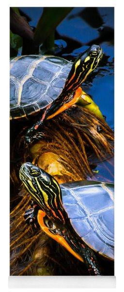 Eastern Painted Turtles Yoga Mat