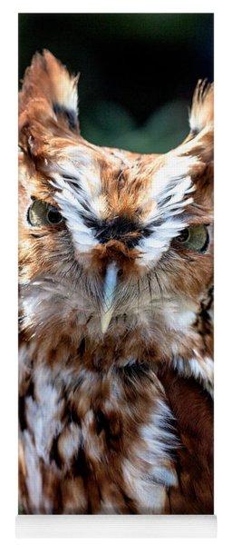 Eastern Screech-owl Yoga Mat