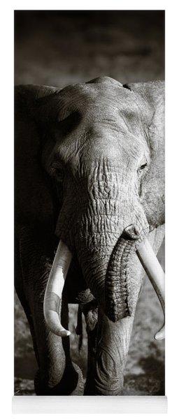 Elephant Bull Yoga Mat
