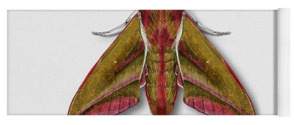 Elephant Hawk Moth Butterfly - Deilephila Elpenor Naturalistic Painting - Nettersheim Eifel Yoga Mat