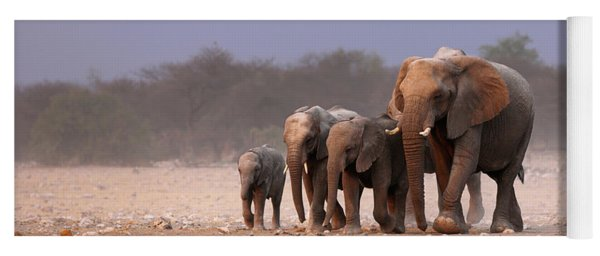 Elephant Herd Yoga Mat