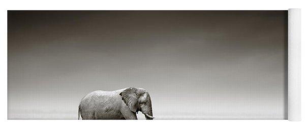 Elephant With Zebra Yoga Mat