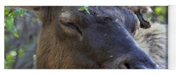 Elk Chuckle Yoga Mat
