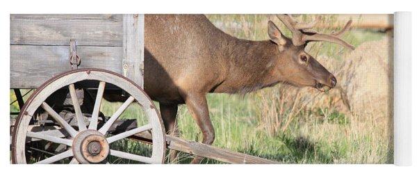 Elk Drawn Carriage Yoga Mat