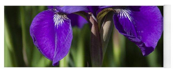 Eloquent Iris Yoga Mat