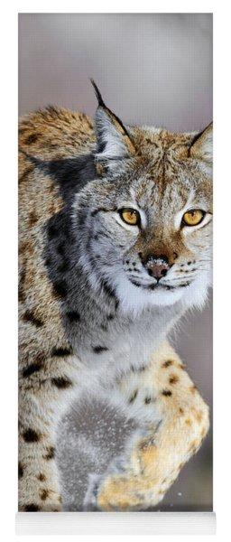 Eurasian Lynx Walking Yoga Mat