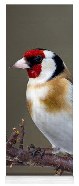 European Goldfinch  Yoga Mat