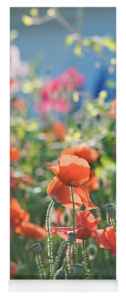 Evening Lights The Poppies Yoga Mat
