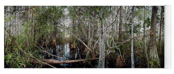 Everglades Swamp-1 Yoga Mat