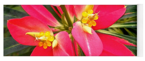 Exotic Red Flower Yoga Mat