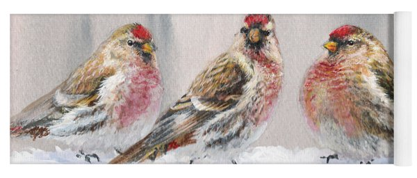 Snowy Birds - Eyeing The Feeder 2 Alaskan Redpolls In Winter Scene Yoga Mat