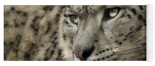 Eyes Of A Snow Leopard Yoga Mat