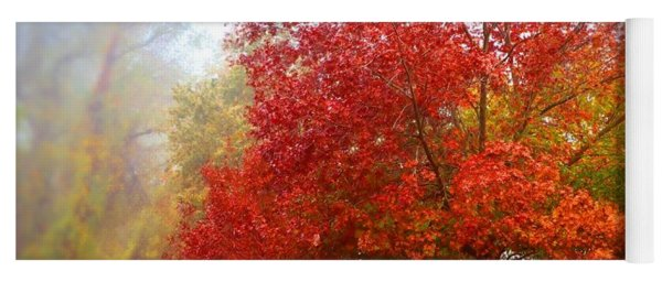 Fall Colored Trees Yoga Mat
