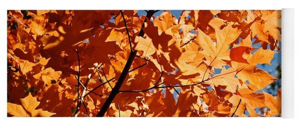 Fall Colors 2 Yoga Mat