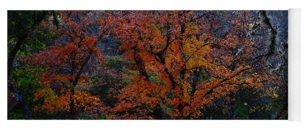 Fall Foliage At Lost Maples State Park  Yoga Mat