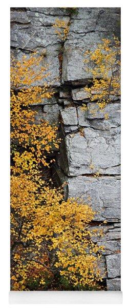 Fall Foliage Colors 01 Yoga Mat