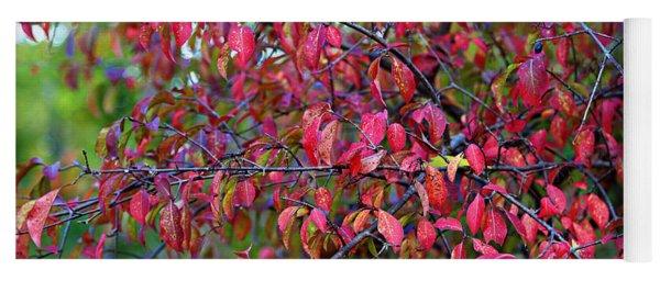 Fall Foliage Colors 05 Yoga Mat
