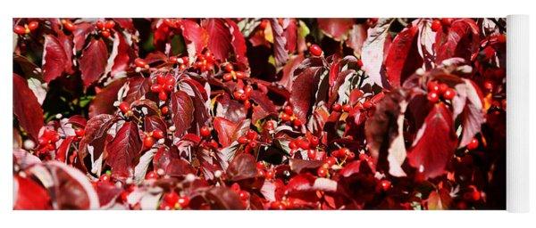 Fall Foliage Colors 08 Yoga Mat