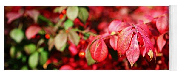 Fall Foliage Colors 10 Yoga Mat