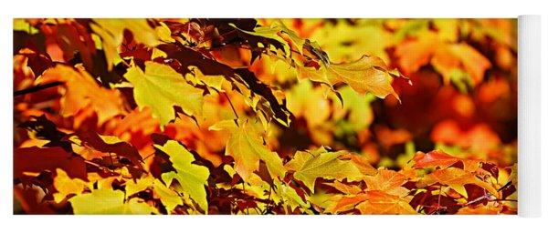 Fall Foliage Colors 13 Yoga Mat