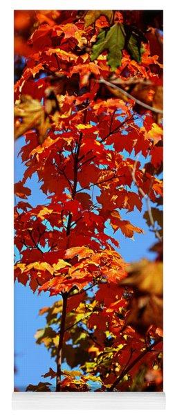Fall Foliage Colors 15 Yoga Mat