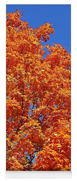 Fall Foliage Colors 18 Yoga Mat