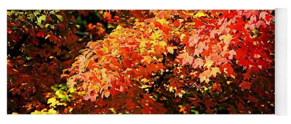 Fall Foliage Colors 21 Yoga Mat
