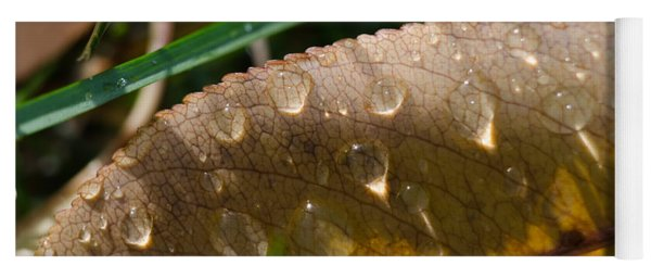 Fall Morning Leaf And Dew Yoga Mat
