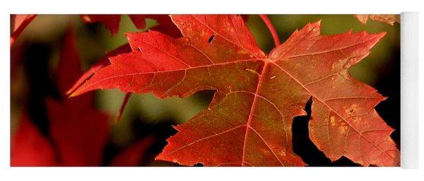Fall Red Beauty Yoga Mat