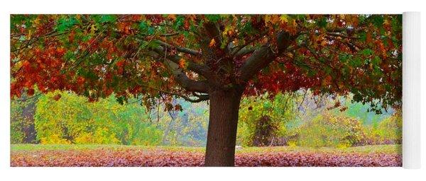 Fall Tree View Yoga Mat