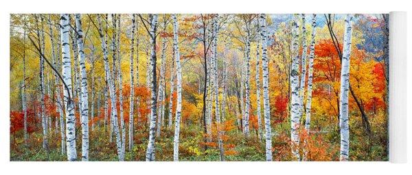 Fall Trees, Shinhodaka, Gifu, Japan Yoga Mat