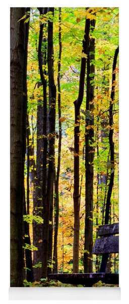 Fall Woods In Michigan Yoga Mat
