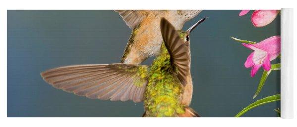 Female Broad-tailed Hummingbird Yoga Mat