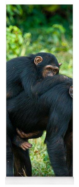 Female Chimpanzee Pan Troglodytes Yoga Mat