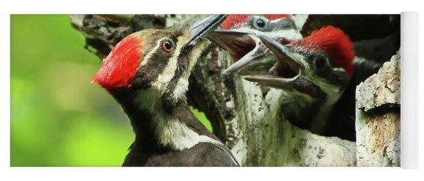 Female Pileated Woodpecker At Nest Yoga Mat