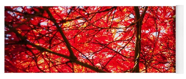 Fiery Maple Veins Yoga Mat