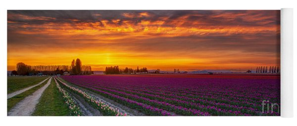 Fiery Skies Above Broad Tulips Yoga Mat