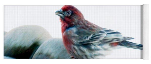 Finch Yoga Mat