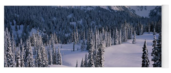 Fir Trees, Mount Rainier National Park Yoga Mat